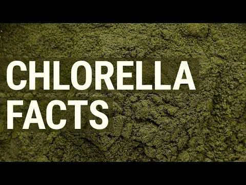 What is Chlorella, and Why Should You Take it
