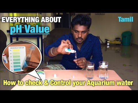 Everything About pH-VALUE - How to check and control your aquarium water | Tamil |