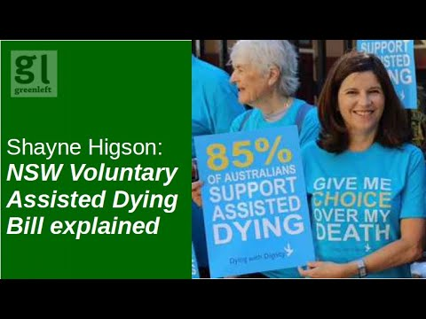 Voluntary Assisted Dying Bill (NSW) explained