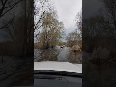В воронежском селе затопило мост