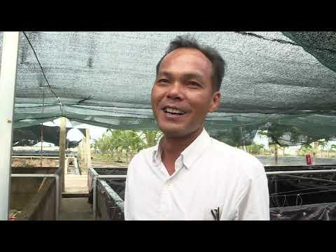 Giống Lươn Đồng Nuôi Dễ Hay Khó