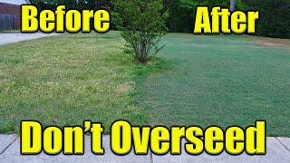 Overseeding Bermuda Lawn