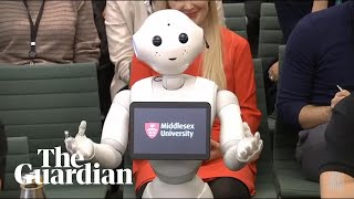Pepper the robot answers MPs