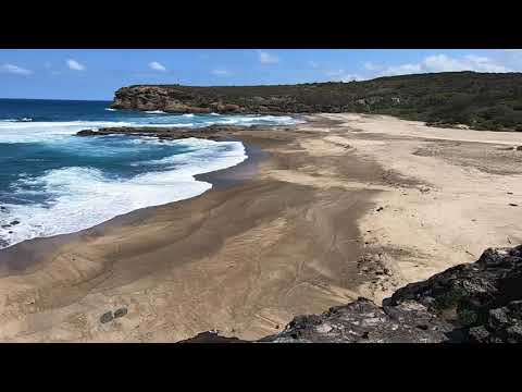 Walk & Talk - Episode 39 - Caves Beach to Catherine Hill Bay