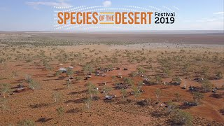 Species of the Desert Festival 2019