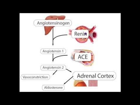 Asthma und Bluthochdruck-Behandlung