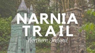 Narnia Trail in Rostrevor - Kilbroney Forest Park - NI