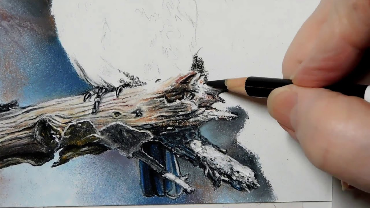 pastel painting of a blue bird tutorial by roby baer