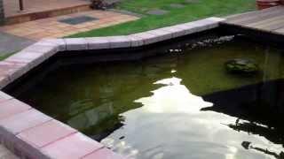 preview picture of video 'EL-Koi Teichanlage 06/2013'