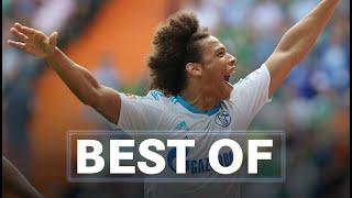 Best Of Goals | Leroy Sané | FC Schalke 04