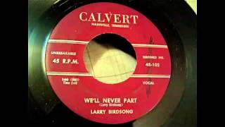 Larry Birdsong - We'll Never Part 45 rpm!