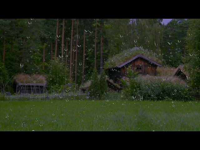 Relaxing Sounds for Sleep 😴 Thunderstorm & Rain Sounds   Nature Sounds Sleep Aid   Insomnia Relief