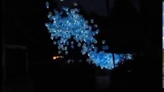 WTF | What The Fireworks | Запуск светящихся воздушных шаров