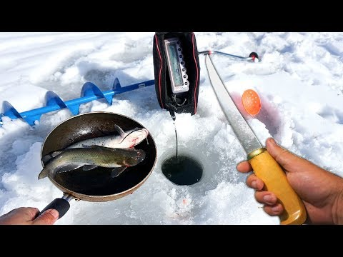 WHOLE CATFISH Catch n' Cook on the Ice!!!