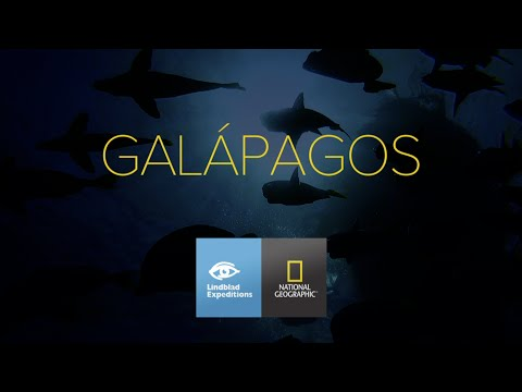 A Glimpse of Galápagos Wildness