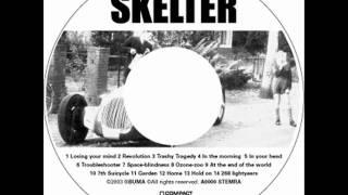 SKELTER - Troubleshooter