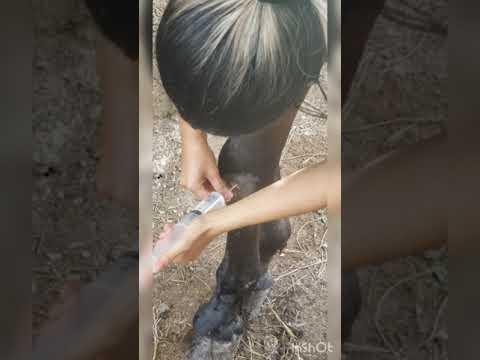 Durere în degetele amorțite ale articulației umărului