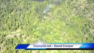 Fire near Swan Lake