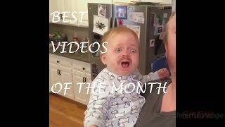 BEST VIDEOS OF THE MONTH 2017 / ЛУЧШИЕ ВИДЕО МЕСЯЦА