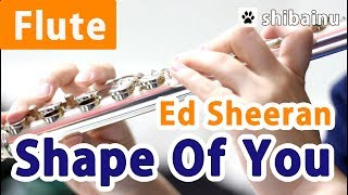 【YOUTUBE】Ed Sheeran/Shape of You