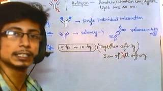 Antigen Antibody Reaction Overview