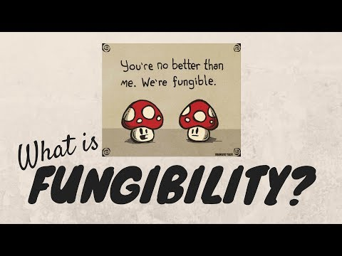 What is fungibility?