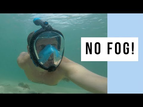The Only 100% Fog Free Full Face Snorkel Mask – Seabeast AF90
