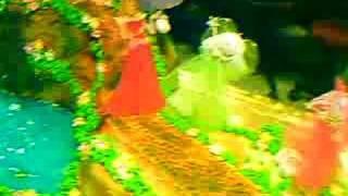 preview picture of video 'video, cumpleaños , castillo princesa elaborada por el chef urugayo nestor javier'