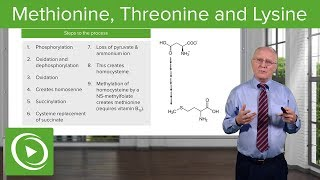 Methionine, Threonine And Lysine Metabolism – Biochemistry | Lecturio