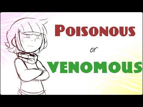Poisonous or Venomous - Undertale Comic Dub