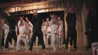 preview picture of video 'Jiu Jitsu Vorführung Moosbrunn'