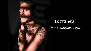 Musik-Video-Miniaturansicht zu What A Wonderful World Songtext von Douwe Bob