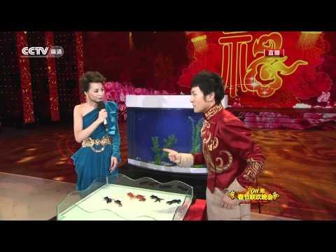 כנראה שדגים מבינים סינית