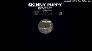 Skinny Puppy ‎– Rodent [DDT Mix]