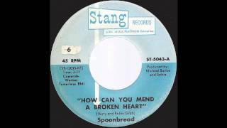 Spoonbread - How Can You Mend A Broken Heart - '73 Soul / R&B on Stang label
