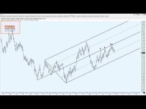 Народный рейтинг брокеров валютной биржи