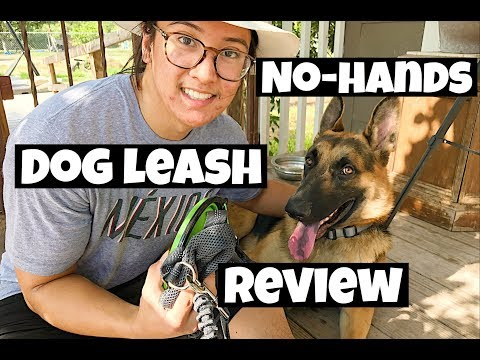 No-Hands Dog Leash For Walking