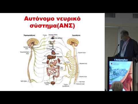 Γ. Κούρτογλου - Σακχαρώδης Διαβήτης και Νευρικό Σύστημα