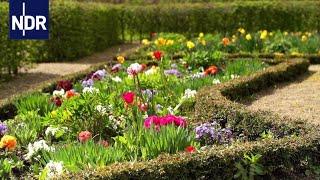 Gärten, Parks und grüne Dächer   die nordstory   Doku   NDR