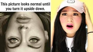 Pictures That Will Confuse Your Brain!
