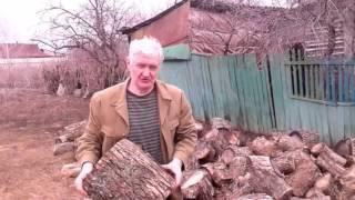 Отдых в деревне. Рубим дрова.