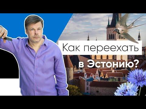 Как переехать в Эстонию. Основания для получения ВНЖ. Пошаговая инструкция!