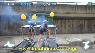 FEDFE - Bee Runner in real life