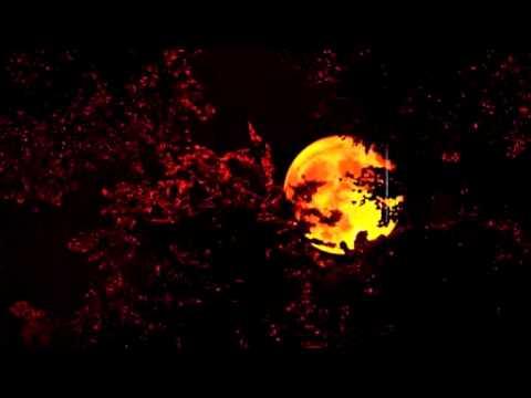 Vidéo de Gilles Caillot
