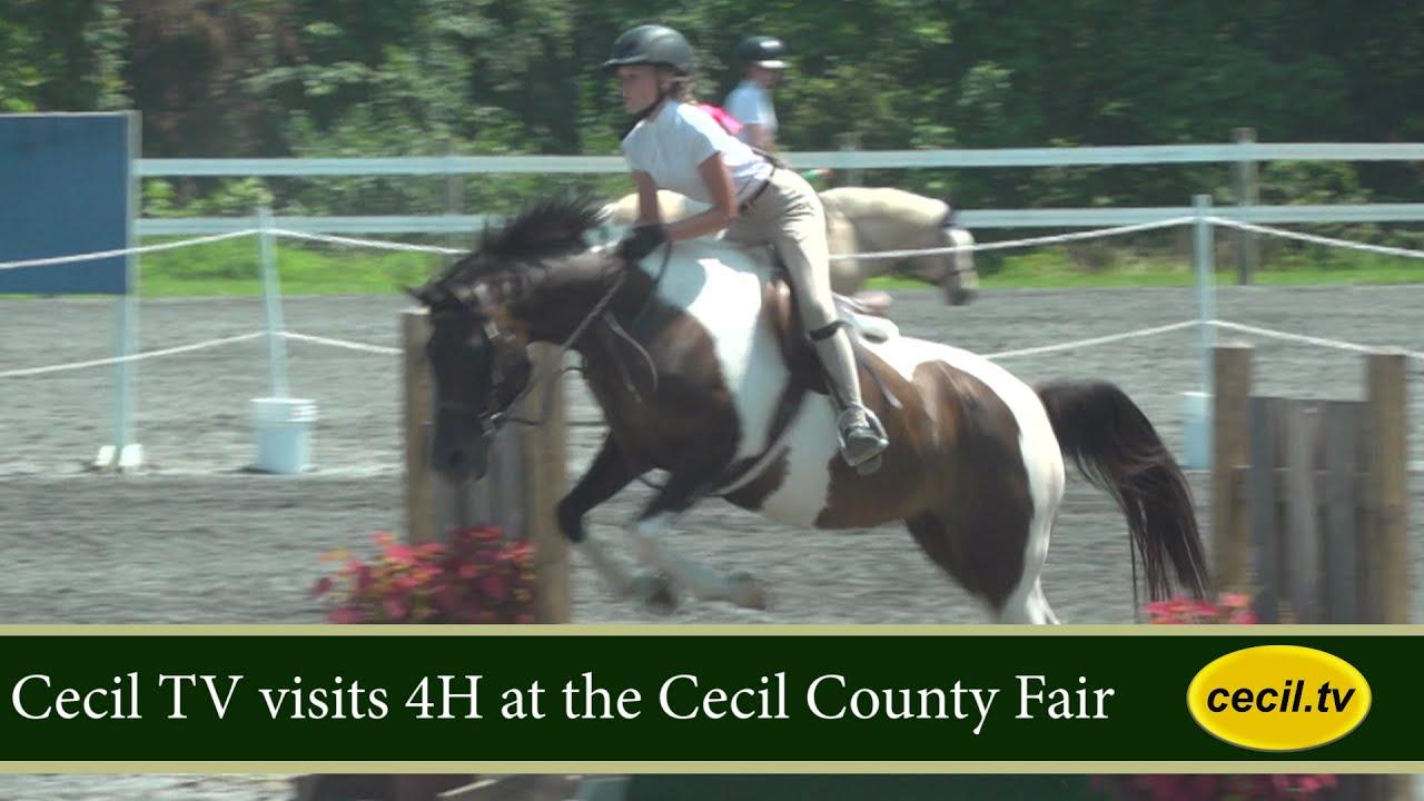 Cecil TV visits 4H at the County Fair.