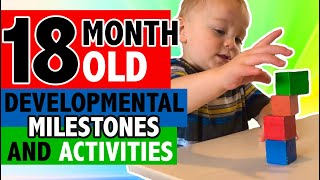 HOW TO PLAY WITH YOUR 18 MONTH OLD   DEVELOPMENTAL MILESTONES   WHAT YOU NEED TO KNOW