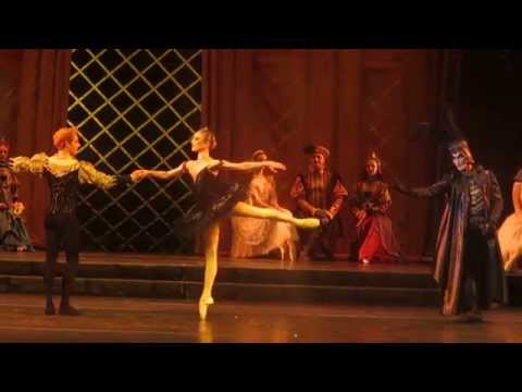 Sarah Lamb / Steven McRae – The Swan Lake