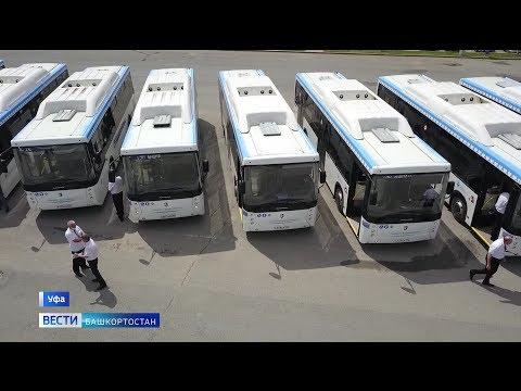 Автопарк «Башавтотранса» пополнился 50 новыми автобусами