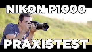 Nikon P1000: 125x Zoom im Praxistest / Review (deutsch)