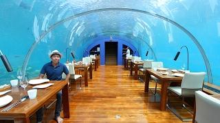 Maldives - A trip to Paradise